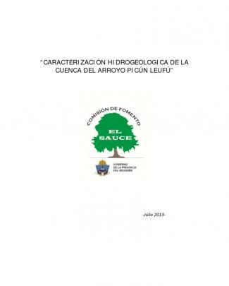 Caracterización Hidrogeologica De La Cuenca Del Arroyo Picún Leufú