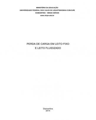 Relatório Leqi - Leito Fixo E Fluidizado.docx
